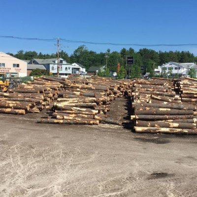 log rows