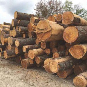 rough-lumber-2